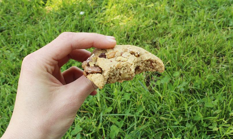 blog,quiainvitélherbivore,animal,recettes,cookies,goûter,sensible,dessert,sucre,test,vegan,végétalien