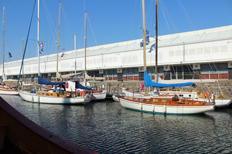 blog,animal,bateaux,larochelle,vacances,sensible