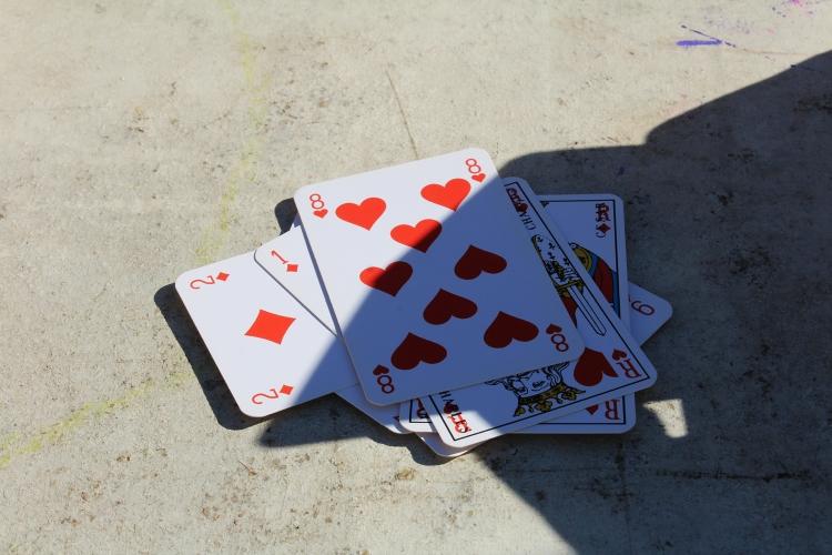 blog,animal,sensible,cartes,jouer,jeu,bafa,règles