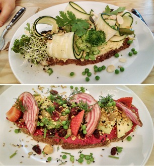 animal,sensible,blog,mint,cantine,vegan,veganisme,manger,nantes,végétalien,repas,bouillon,tofu