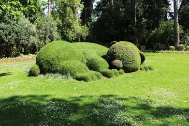 anima,sensible,blog,fleurs,jardin,plantes,nantes,vacances,dodo,ours